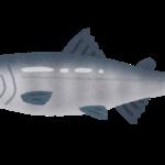 日本の川で鮭釣りが出来る!筋力付けて鮭と格闘!